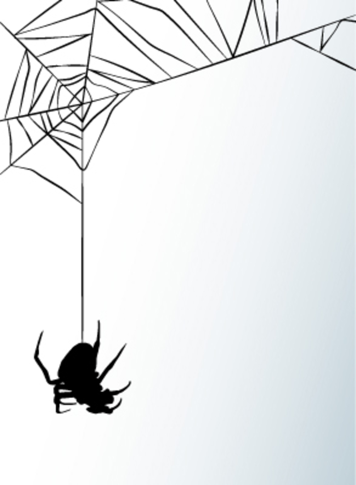 essays on fear of spiders Overcoming fear a personal narrative essays and term papers available at echeatcom, the largest free essay community.