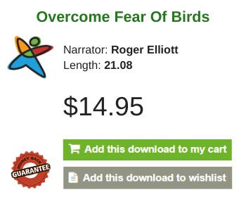 Ornithophobia, The Fear Of Birds