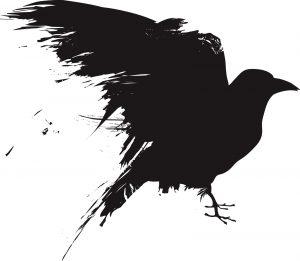 Ornithophobia fear of birds